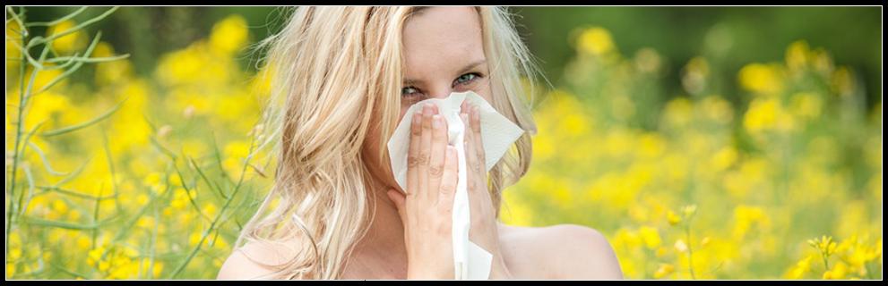 Moustiquaire anti pollen